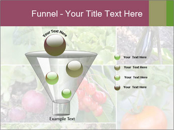 Organic Veggies PowerPoint Template - Slide 63