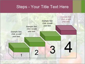 Organic Veggies PowerPoint Templates - Slide 64