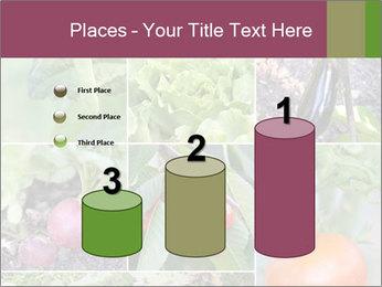 Organic Veggies PowerPoint Templates - Slide 65