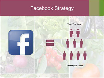 Organic Veggies PowerPoint Templates - Slide 7
