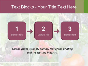 Organic Veggies PowerPoint Template - Slide 71