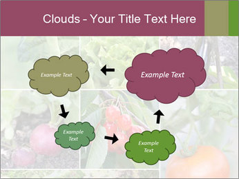Organic Veggies PowerPoint Templates - Slide 72