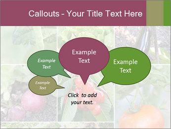 Organic Veggies PowerPoint Template - Slide 73