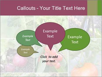 Organic Veggies PowerPoint Templates - Slide 73