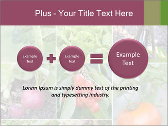 Organic Veggies PowerPoint Template - Slide 75