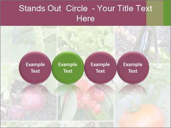 Organic Veggies PowerPoint Templates - Slide 76