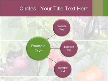 Organic Veggies PowerPoint Templates - Slide 79