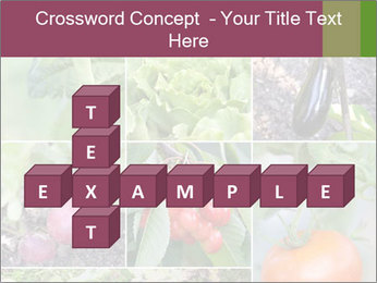 Organic Veggies PowerPoint Templates - Slide 82