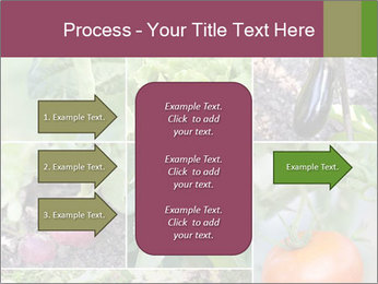 Organic Veggies PowerPoint Template - Slide 85