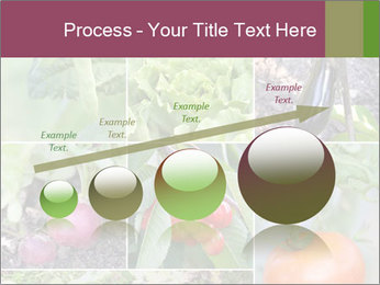 Organic Veggies PowerPoint Templates - Slide 87