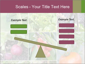 Organic Veggies PowerPoint Template - Slide 89
