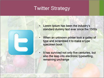 Organic Veggies PowerPoint Templates - Slide 9