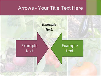 Organic Veggies PowerPoint Template - Slide 90