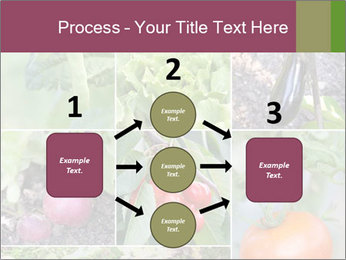 Organic Veggies PowerPoint Template - Slide 92