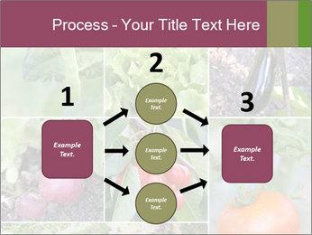 Organic Veggies PowerPoint Templates - Slide 92