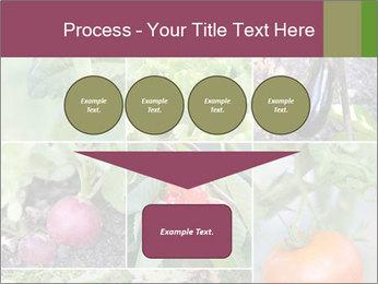 Organic Veggies PowerPoint Templates - Slide 93