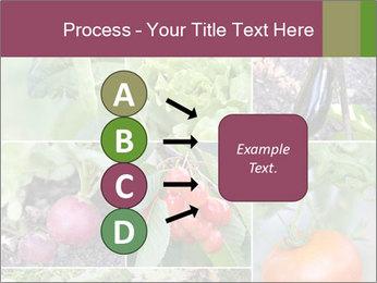 Organic Veggies PowerPoint Templates - Slide 94