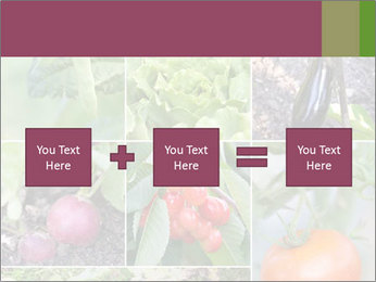 Organic Veggies PowerPoint Template - Slide 95