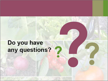 Organic Veggies PowerPoint Template - Slide 96