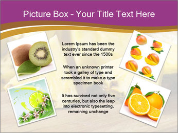 Sweet Slices Of Pineapple PowerPoint Template - Slide 24