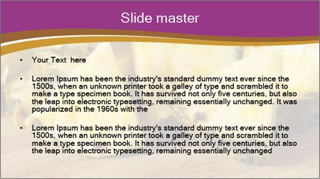 Sweet Slices Of Pineapple PowerPoint Template - Slide 2