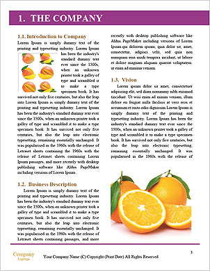 0000090965 Word Template - Page 3