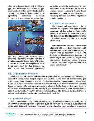 0000090970 Word Template - Page 4