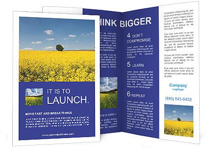 0000090972 Brochure Templates