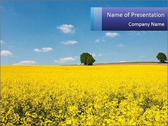 Golden Field Modèles des présentations  PowerPoint