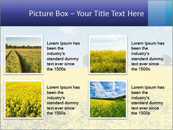 Golden Field PowerPoint Template - Slide 14
