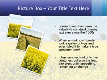 Golden Field PowerPoint Template - Slide 17