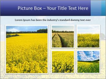 Golden Field PowerPoint Template - Slide 19