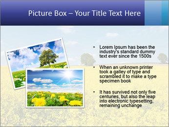 Golden Field PowerPoint Template - Slide 20