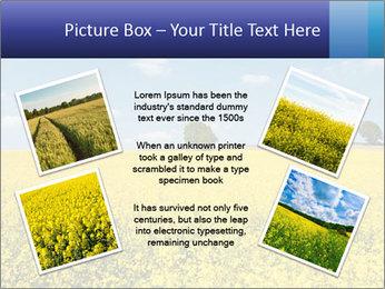 Golden Field PowerPoint Template - Slide 24