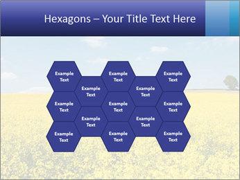 Golden Field PowerPoint Template - Slide 44