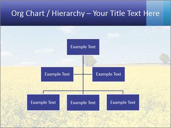 Golden Field PowerPoint Template - Slide 66