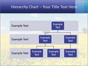 Golden Field PowerPoint Template - Slide 67