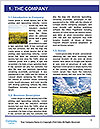 0000090972 Word Templates - Page 3