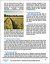 0000090972 Word Template - Page 4