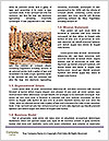 0000090978 Word Templates - Page 4