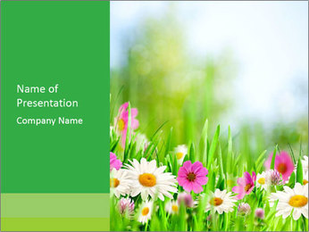 Green Grass And Flowers PowerPoint Template
