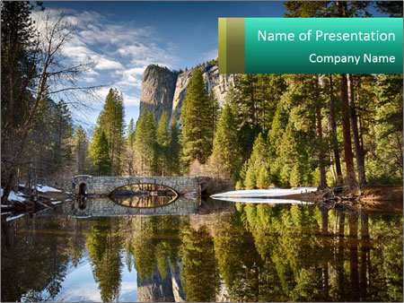 Pine Trees And Lake PowerPoint Templates