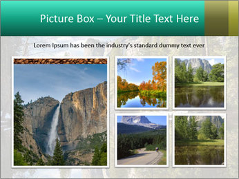 Pine Trees And Lake PowerPoint Templates - Slide 19