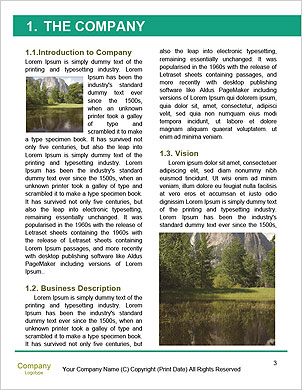 0000090998 Word Template - Page 3