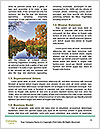 0000090998 Word Template - Page 4