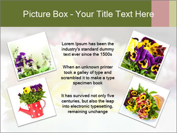 Flowers On Wooden Floor PowerPoint Template - Slide 24