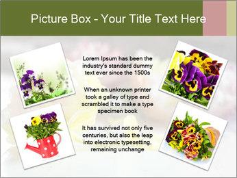 Flowers On Wooden Floor PowerPoint Template - Slide 24