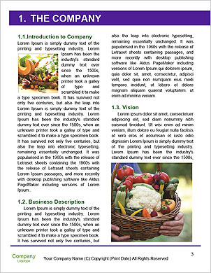 0000091015 Word Template - Page 3
