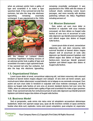 0000091015 Word Template - Page 4