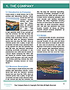 0000091022 Word Template - Page 3